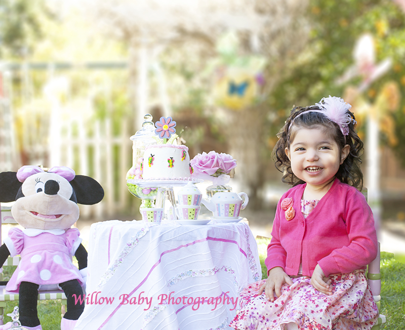 Two Year Old Birthday 187 Willow Baby Photography