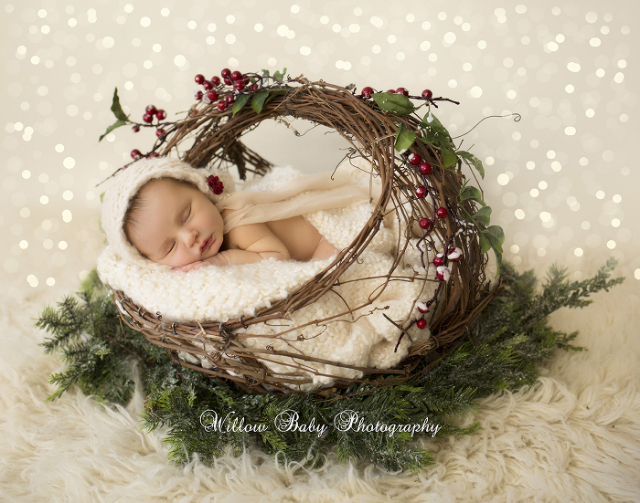 Holiday fun willow baby photography